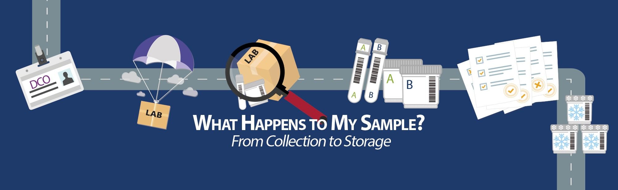 What Happens to My Sample: From Collection to Storage