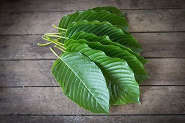 kratom leaves on table