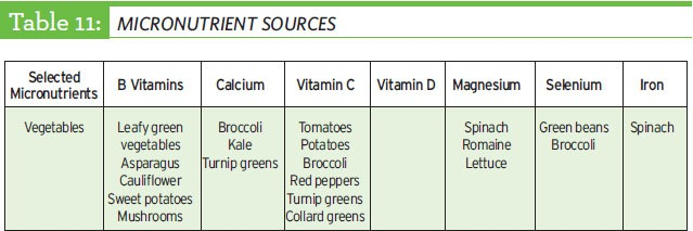 table of micronutrient sources