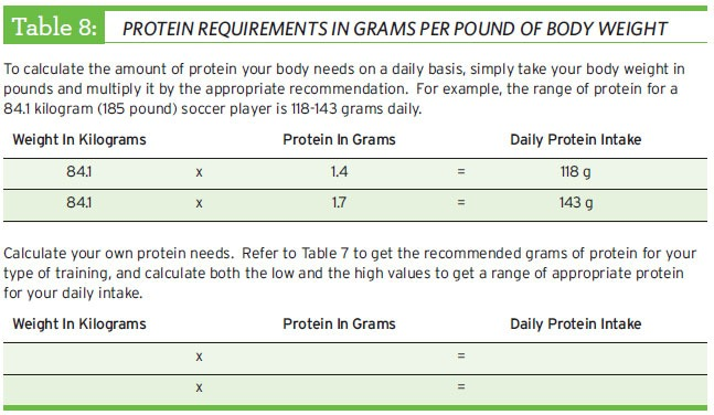 protein requirements in grams per pound of body weight
