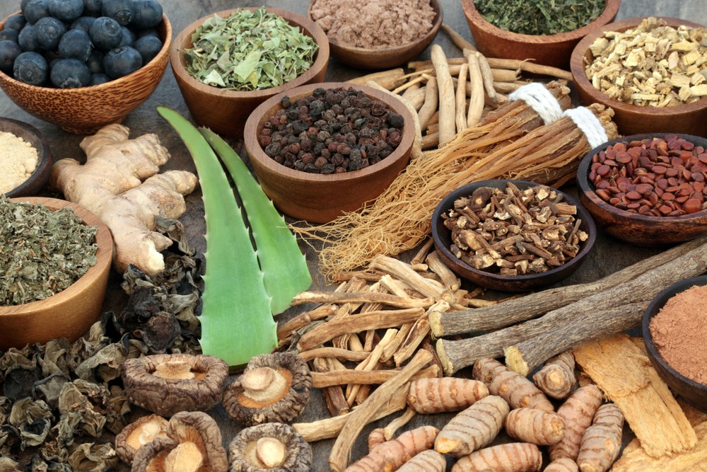 A variety of dried plants and herbs commonly used in supplements.